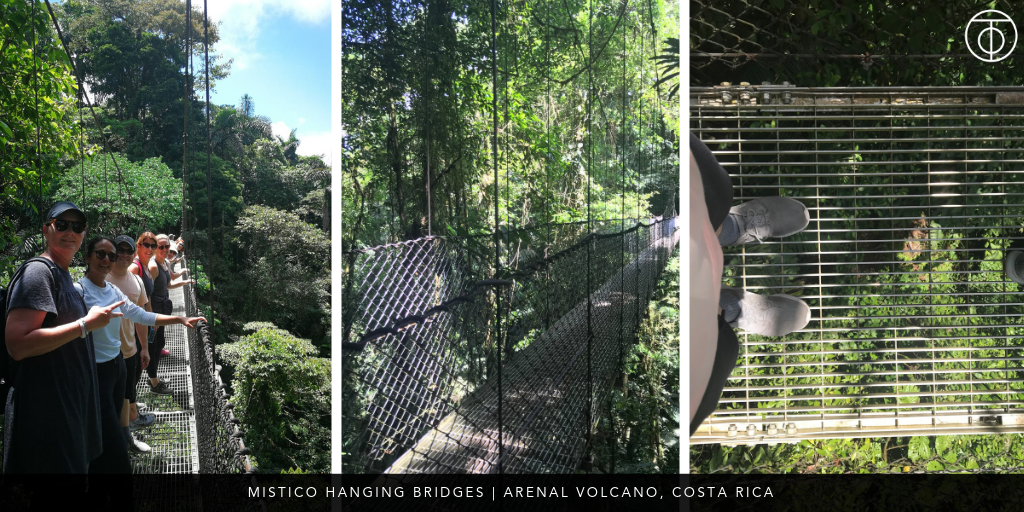 Arenal, Costa Rica: Mistico Hanging Bridges