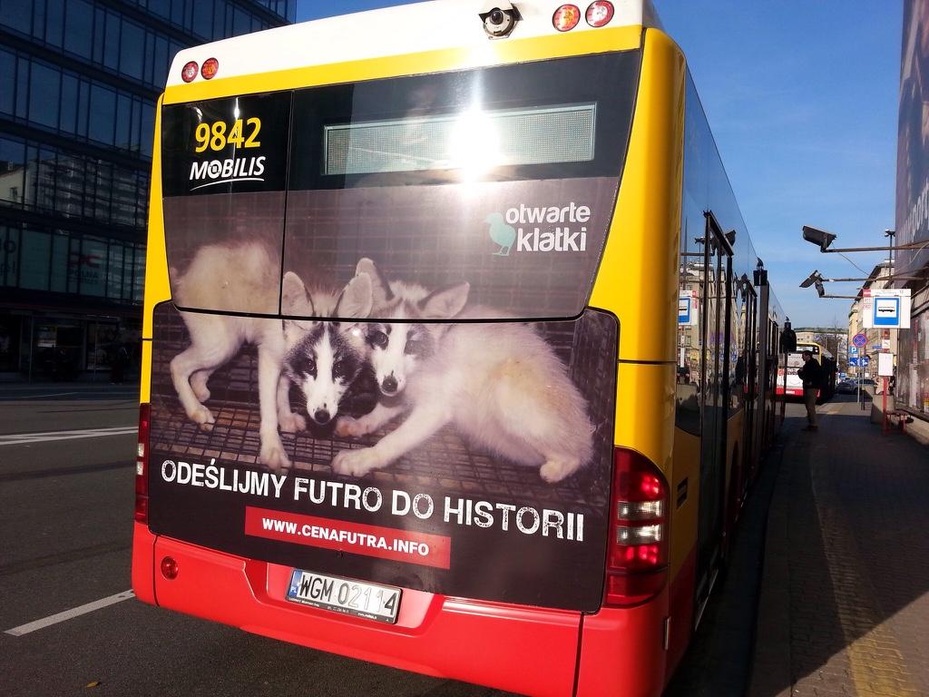 Reklama na autobusach - odeślimy futro do historii