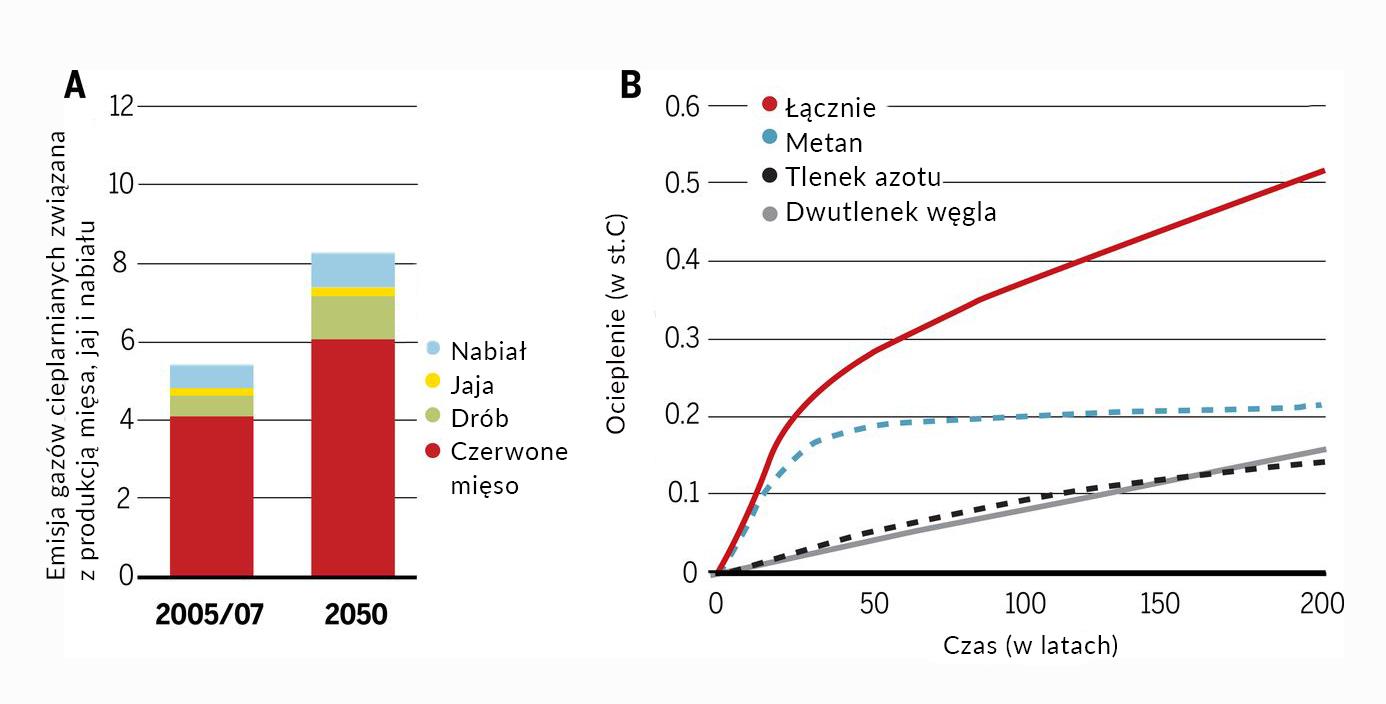 gazy cieplarniane, hodowla przemysłowa, ocieplenie klimatu