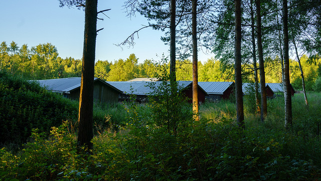 śledztwa na fińskich fermach futrzarskich