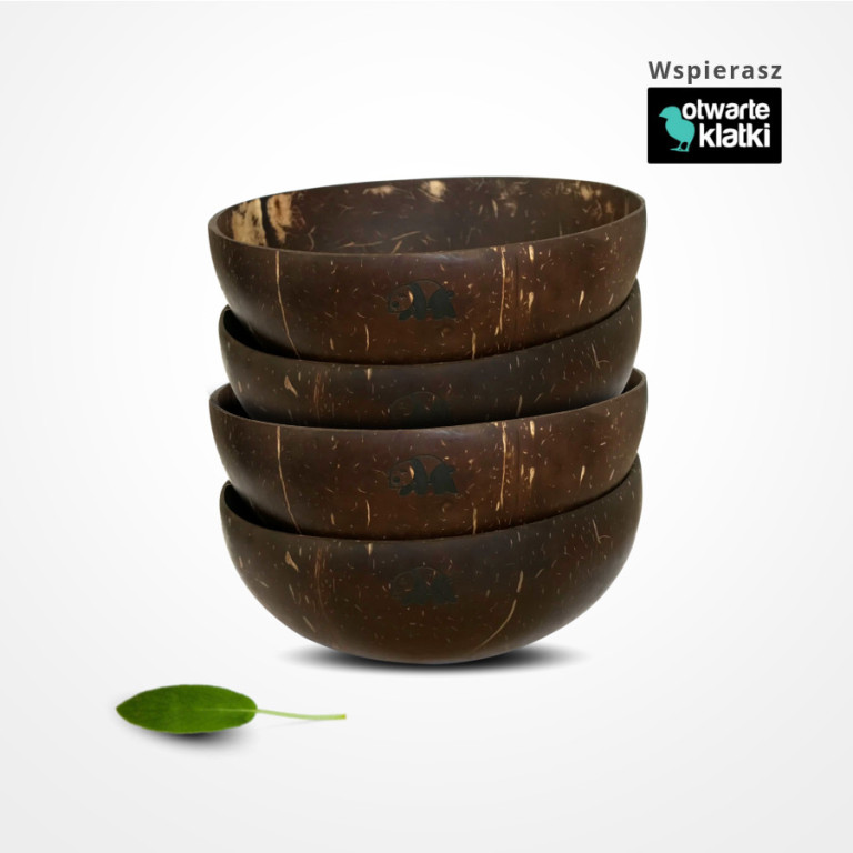 ekologiczna miska z łupiny kokosa