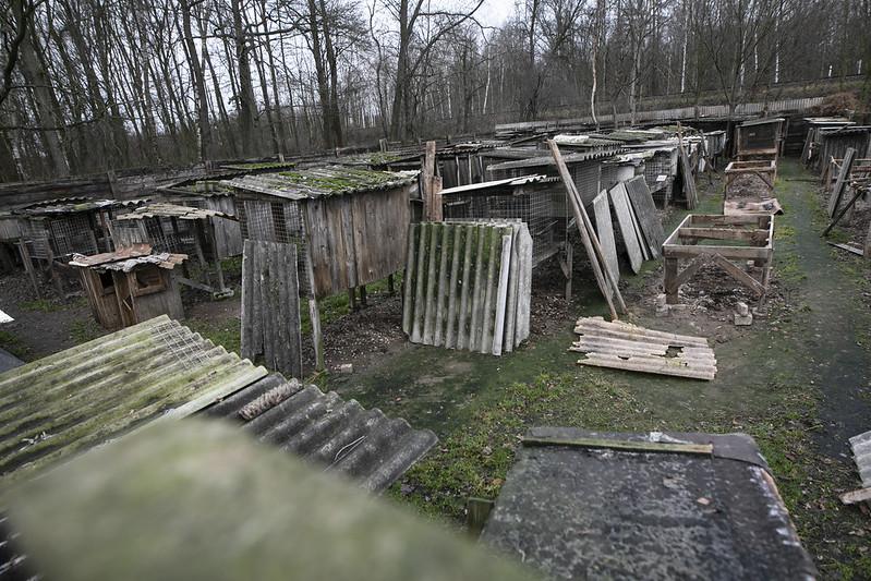 Zamknięta ferma lisów w Karskach, fot. Andrew Skowron