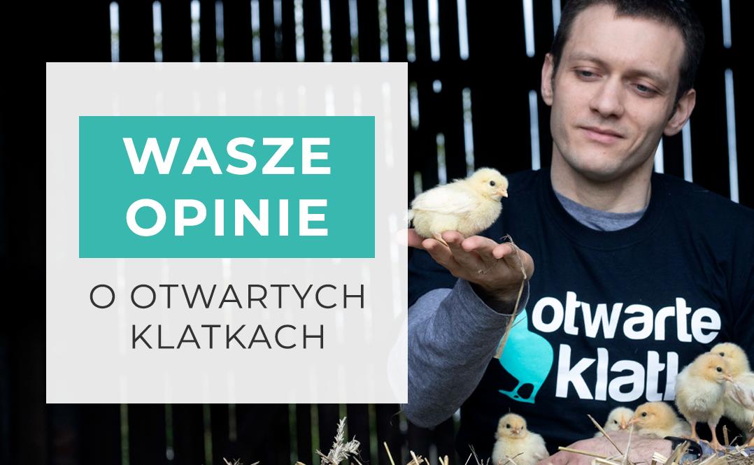 OBRAZEK: Młody mężczyzna w koszulce Otwartych Klatek trzymający pisklę kurczaka w prawej ręce i obejmujący pięć pisklaków lewą. NAPIS: Wasze opinie o otwartych klatkach