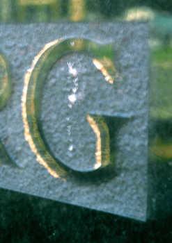 PAA022000035