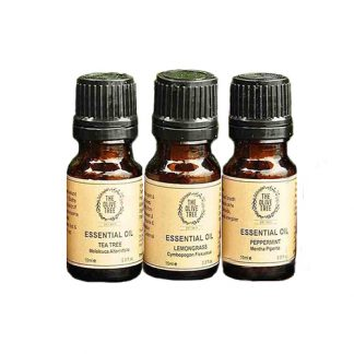 THE OLIVE TREE Essential Oil Gift 3 Item Set
