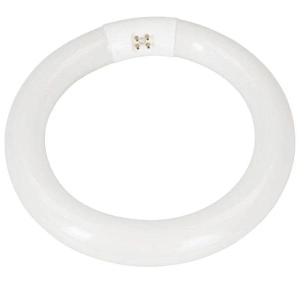 Cirkulärt lysrör G10q T9 1050 lm