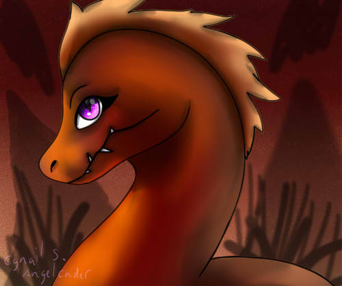 Amber headshot Raptor
