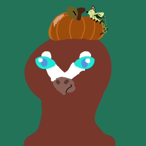 Pumpkin roll-Evean