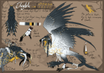 [DS Reference Sheet]Cheglok