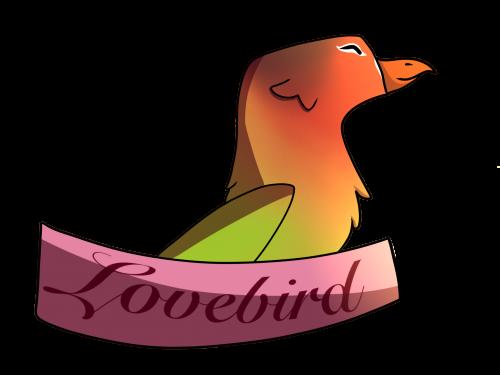 Handsome 'Lil Lovebird