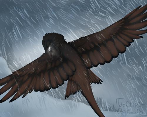 Stormborne [Repost]