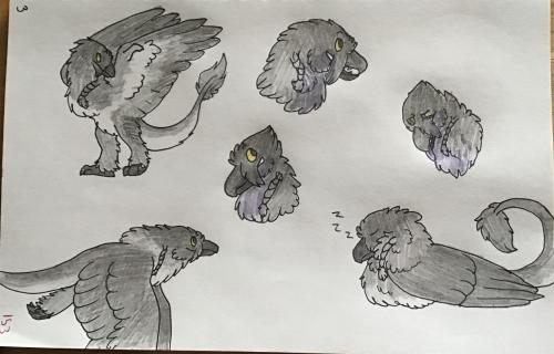 Raven sketch sheet