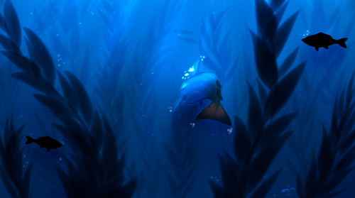 Trapped in the Kelp