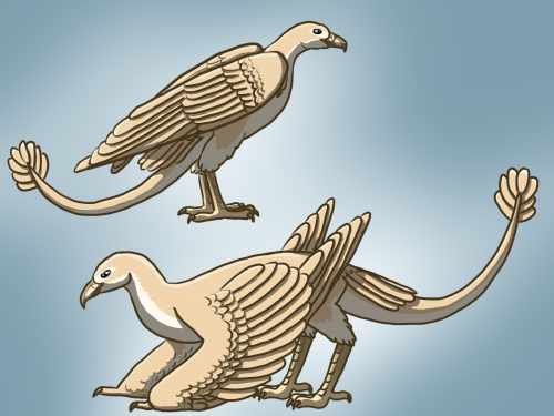 Bird or dragon?