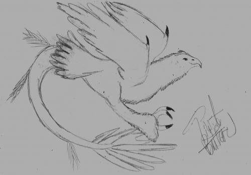 Simple Bird Sketch