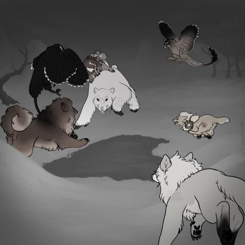 {P} Bear Attack