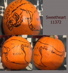 Sweetheart On A Pumpkin