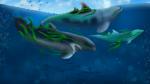 [DOA] Kelp Anyone?