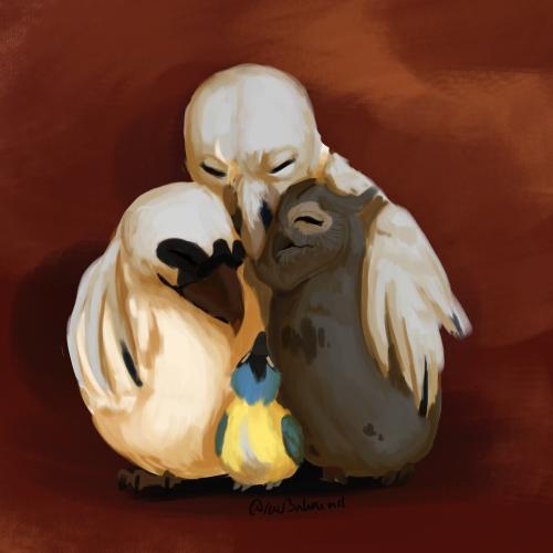 Soft Chicken