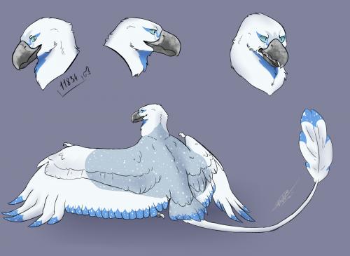 AP [Dracostryx]