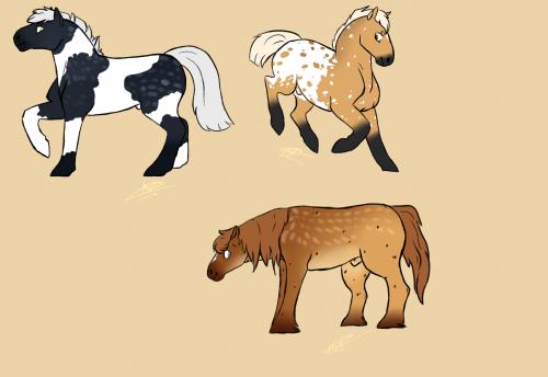 Horses?HORSES!