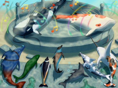 Concert for dolphins