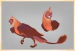 Dracostryx AP - Felicia