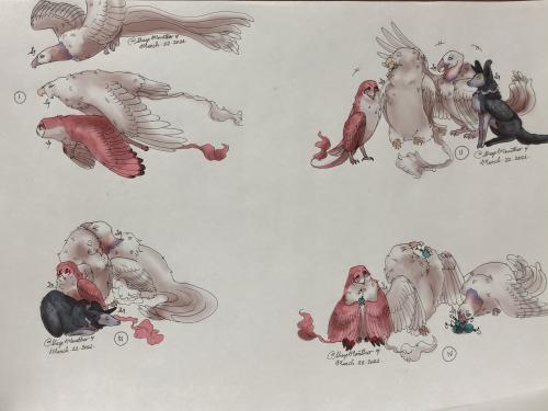 {P} Fluffy Birds