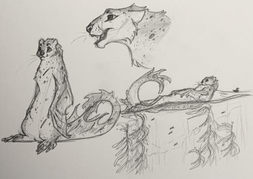 Samwell Doodles