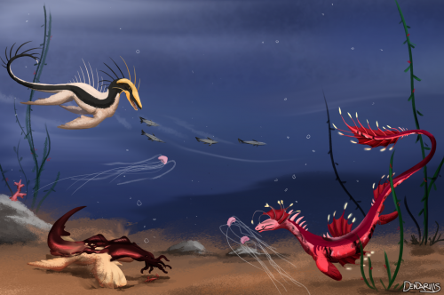 Gathering Crabs and Jellys