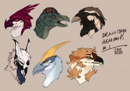 [DS] Bird-call Headshot #1