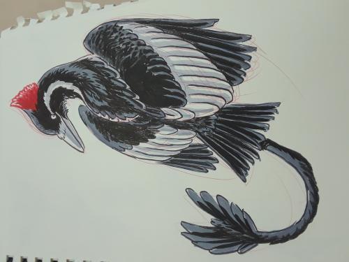 Van Dyke doodle
