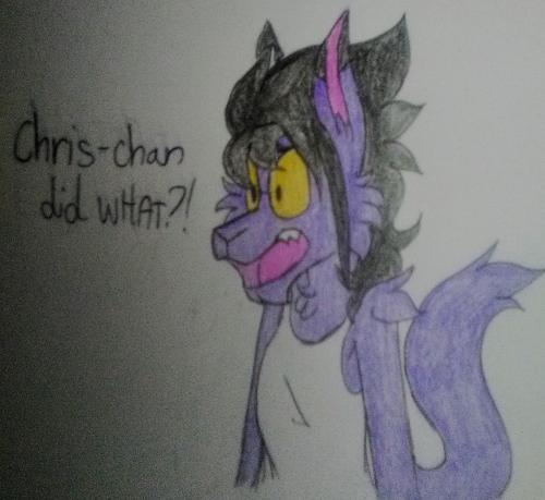chris-chan did what!?