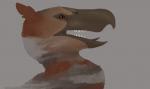 Painted Rocky Headshot