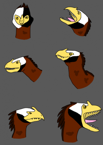 The many faces of Hayard