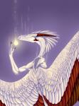 Shiny Feathers