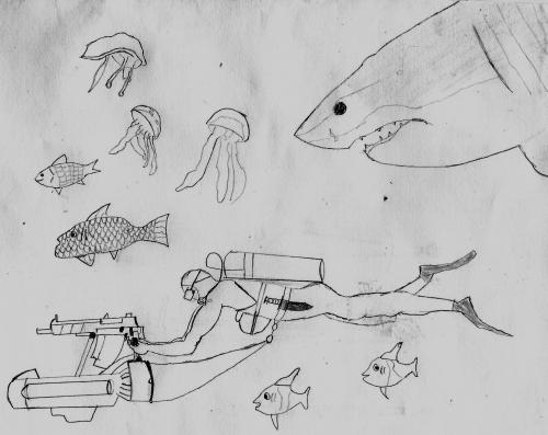 Assault diver and shark