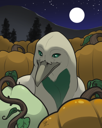 Pumpkin Patch - Great Harvest Week 1