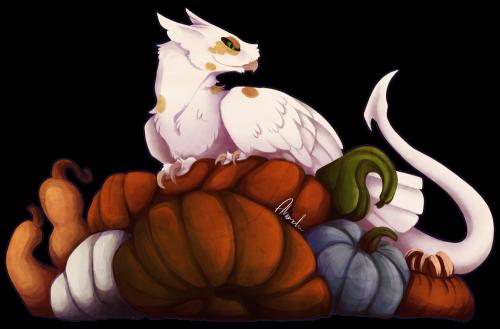 GH Pumpkins Week 1