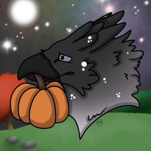Pumpkin snatch- Week 1