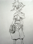 Sora continued...