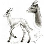 Valdere creature sketch