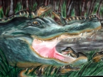 Mother and Child_Alligators