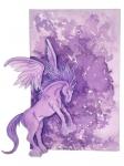 Violet Pegasus