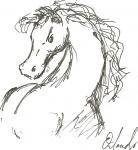 its a pony