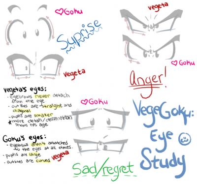 VegeGoku: Eye Study