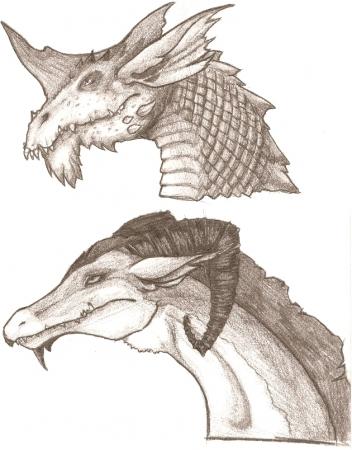 Dragon Sheet 1