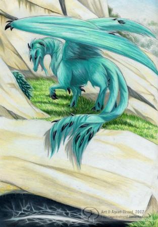 Who Dares Wake the Dragon?