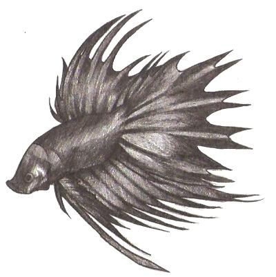Betta Fish tattoo design v.1