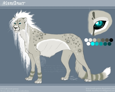Moonflower reference - Primary